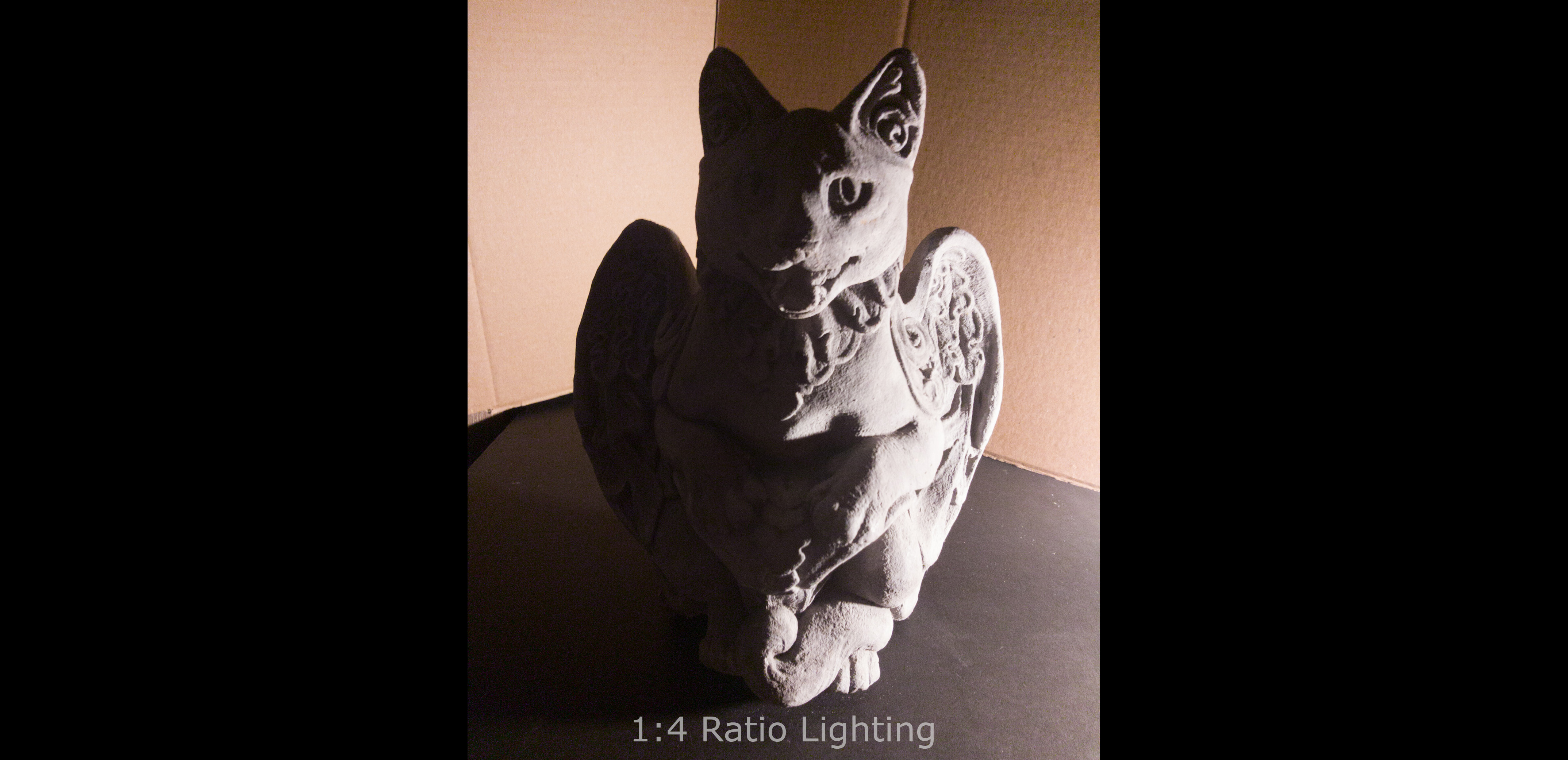 1:4 Ratio Lighting