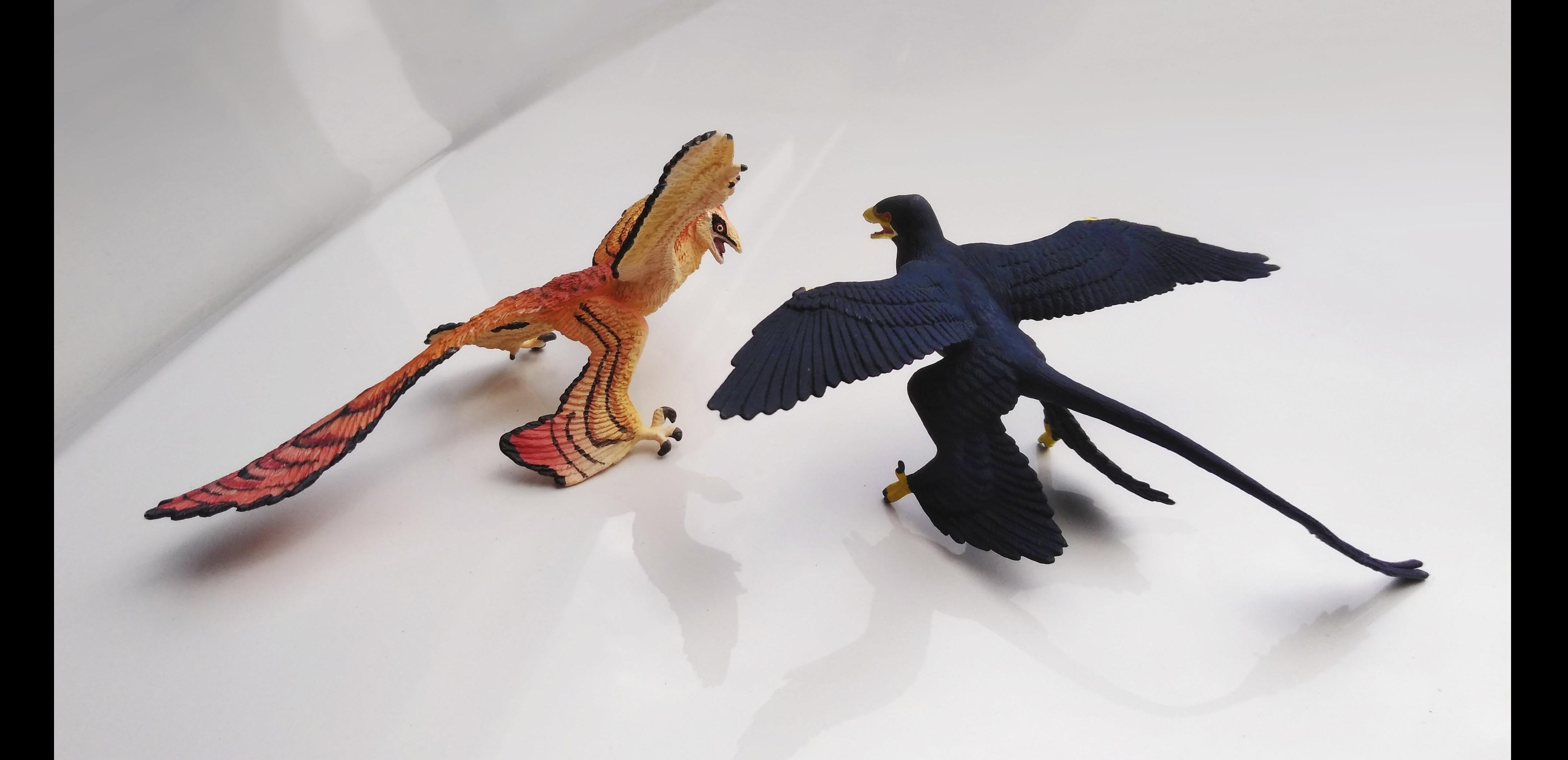 Microraptor Toys